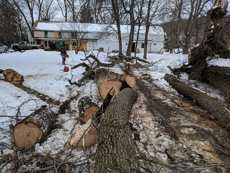 Arbor-Valley-Tree-Service---Orange-County-NY---Storm-Tree-Removal.jpg