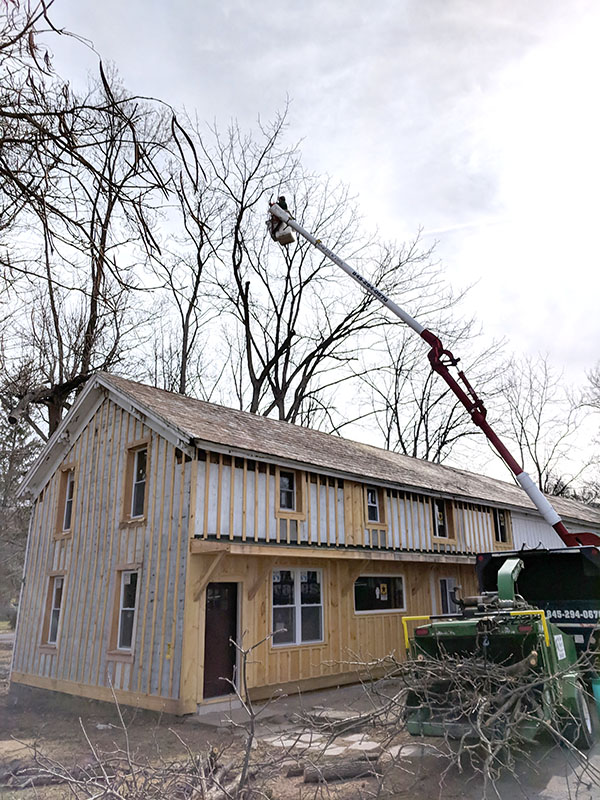 Arbor-Valley-Tree-Service---Orange-County-NY---Tree-Specialist.jpg